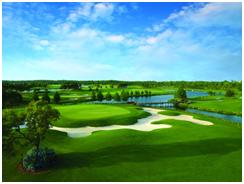 Luxury Orlando rentals