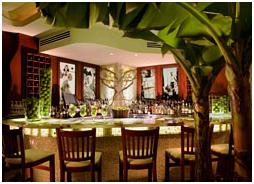 Luxury Miami villas