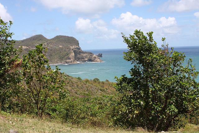 St Lucia loimere