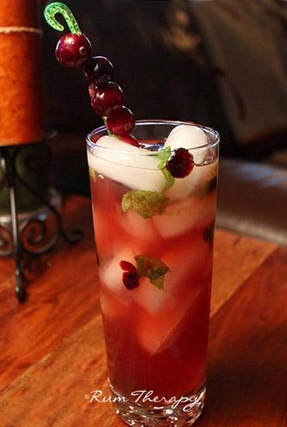 Cranberry Mojito courtesy of Rum Therapy