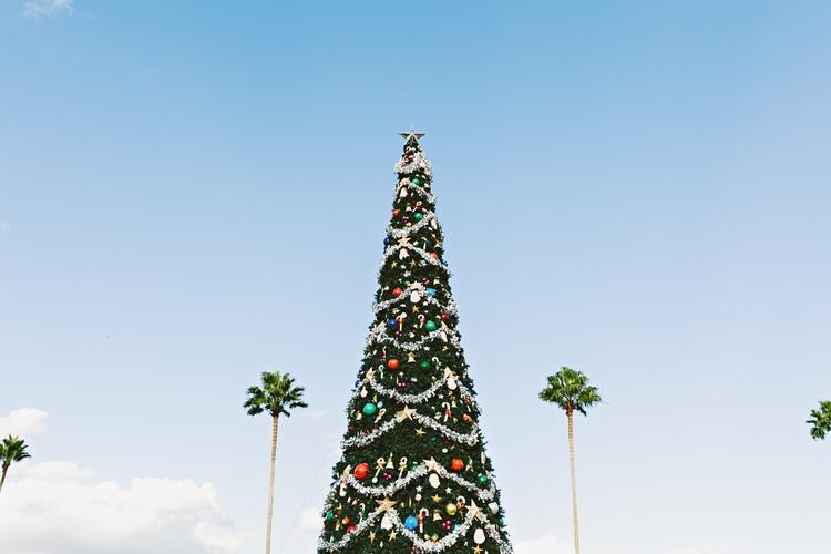 Christmas in Orlando Florida