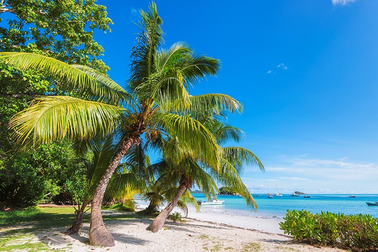Family resorts in Barbados