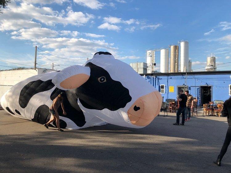 The Milk District