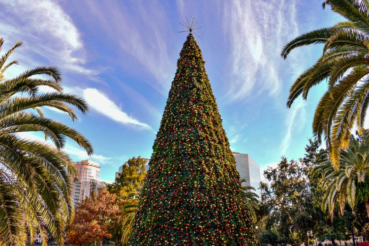 Christmas Day in Orlando