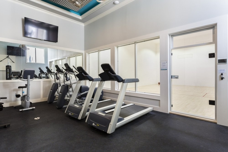 This impressive gym features 2 treadmills, 2 cross-trainers and exercise bike