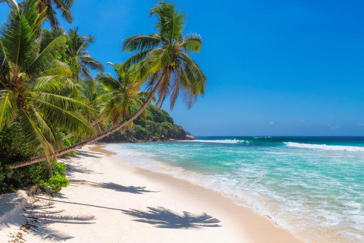 Jamaica vacations 2021
