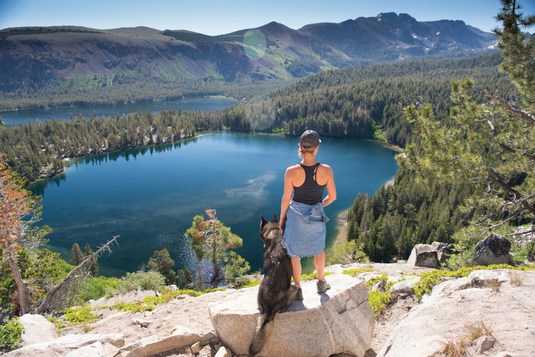 Lady hiker with dog hiking in Mammoth Lakes