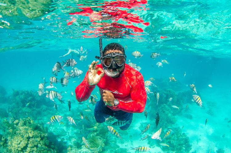 Grand Cayman Snorkelling