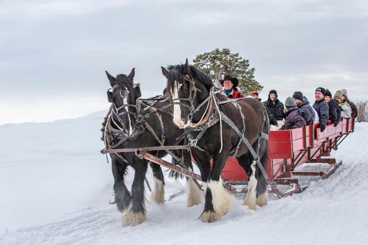 Sleigh rides are popular things to do in Park City