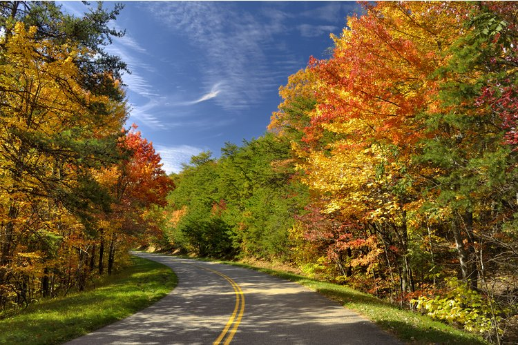Roadtrips in Great Smoky Mountains