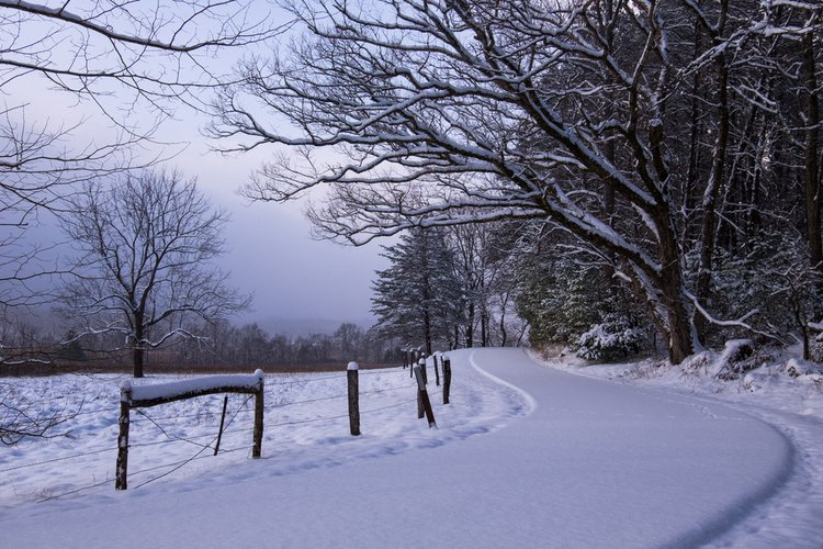 Winter in Great Smoky Mountains