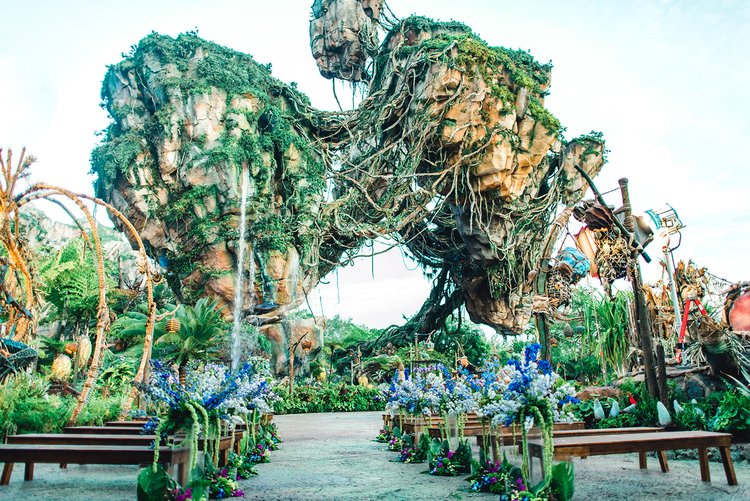 Disney World is one of the best wedding venues in Orlando