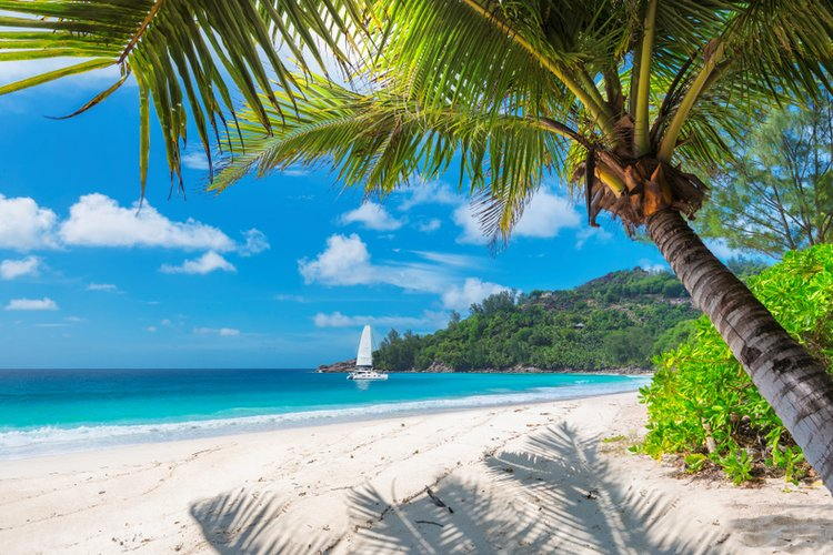 Packed with things to do, Jamaica is a great Caribbean destination for family vacations