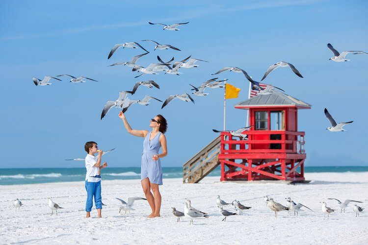 Clearwater offers a host of free things to do!