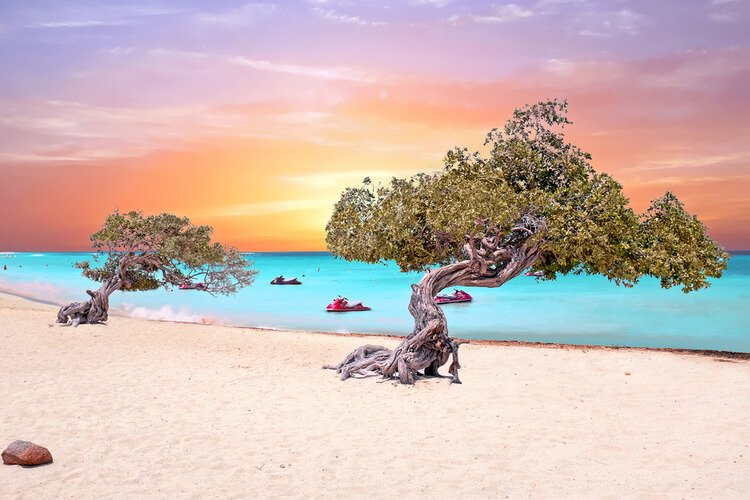 Aruba offers an authentic and cheap Caribbean getaway!