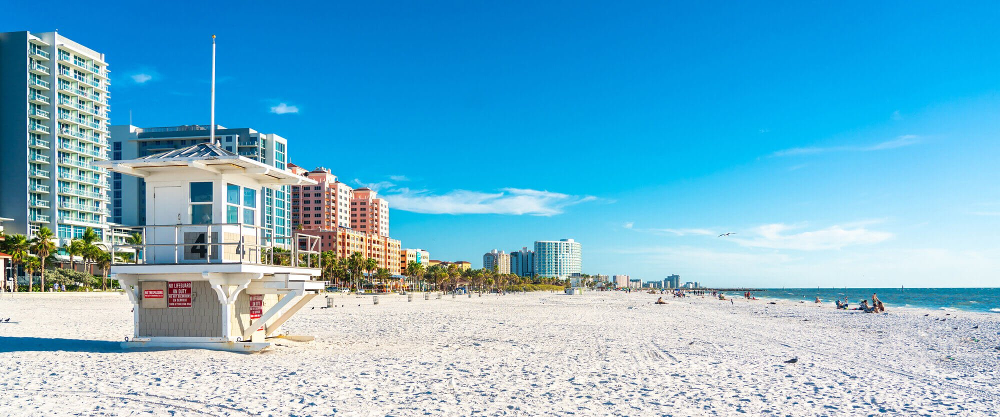 Discover all the best things to do in Clearwater!
