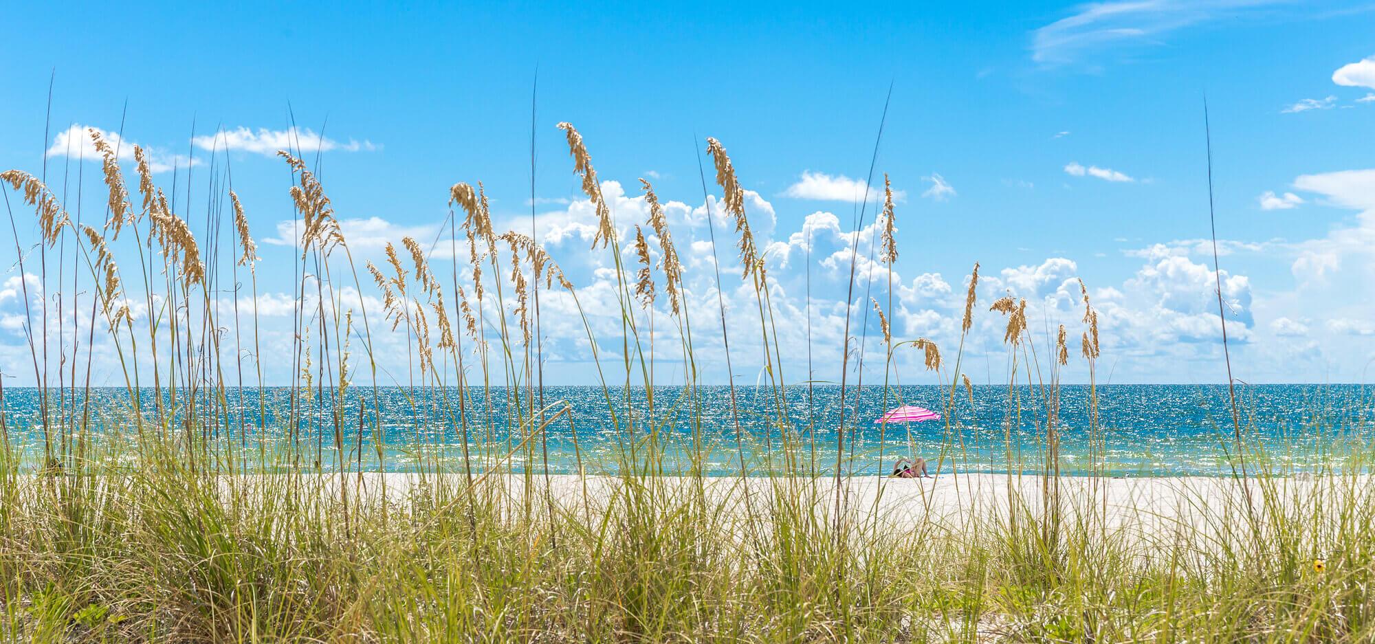 Florida winter rentals